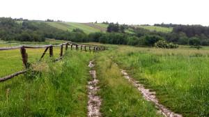 Diana Szymańska -  Droga w nieskończoność